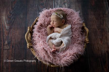 So zart – Doreen Gesuato – Fotografin für Neugeborene rund um Wertheim