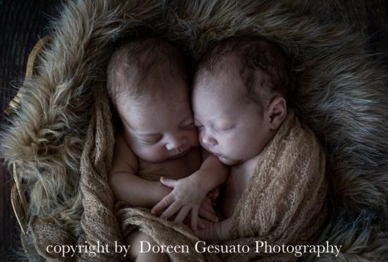 Liebe im Doppelpack -Doreen Gesuato – Fotografin für Neugeborene rund um Wertheim