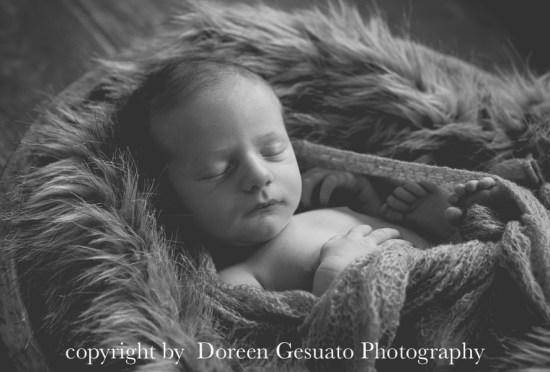 So lieb – Doreen Gesuato – Fotografin für Neugeborene rund um Wertheim
