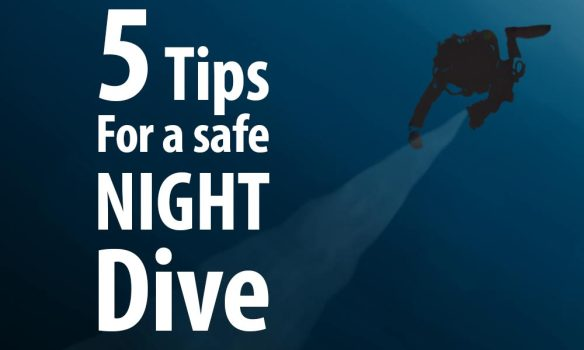 Safe_Night_Dive