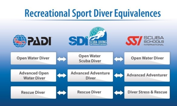 dive-training-agencies-equivalences
