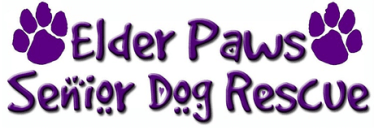 Elder Paws Senior Dog Rescue