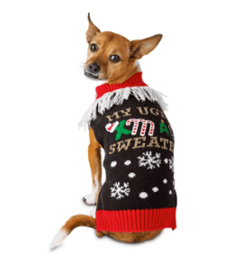 Dog in Christmas sweater