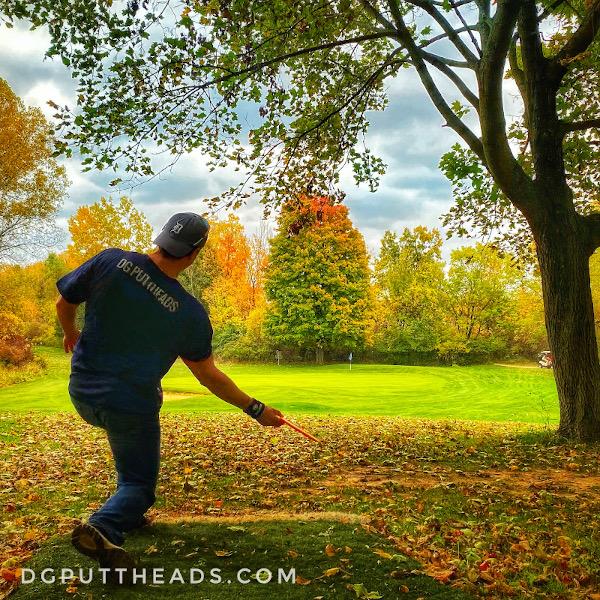 Disc Golf on a Golf Course