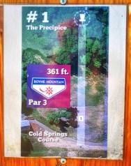 Boyne Disc Golf Tee Sign