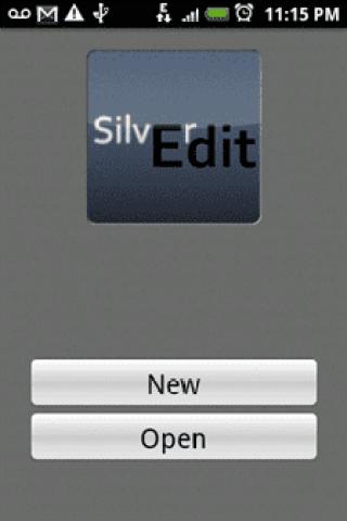 Silver Edit Home