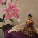 Meditation and Dharma Group in Calgary