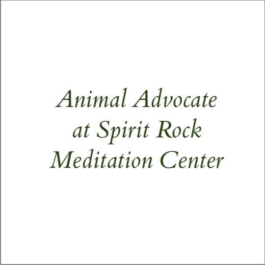 Animal Advocate at Spirit Rock