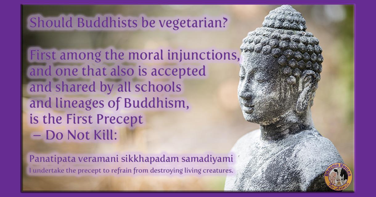 Should a buddhist be a vegetarian?
