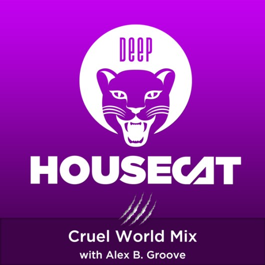 Cruel World Mix - with Alex B. Groove
