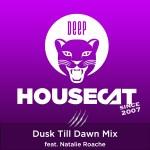 Dusk Till Dawn Mix - feat. Natalie Roache