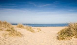 Studland Dunes, Dorset