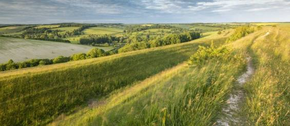 national trust day out at hod hill
