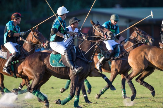 2015 Maharaja Ranjit Singh Polo Cup