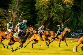 Maharaja Ranjit Singh Polo Cup 2015