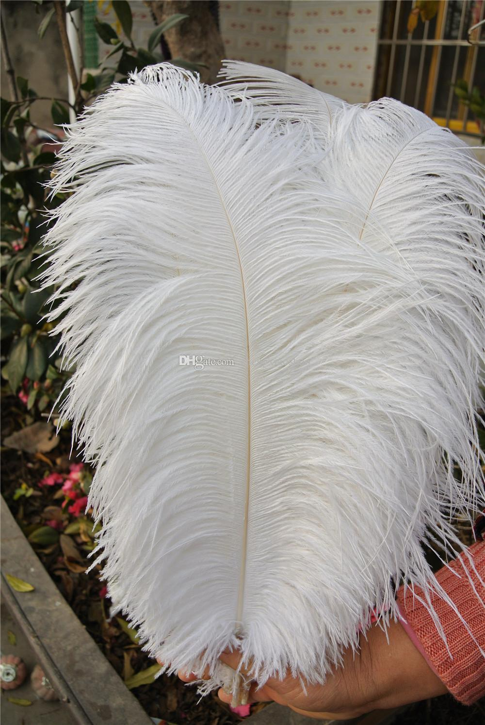Wholesale 18 20inch45 50cm White Ostrich Feathers Plumes