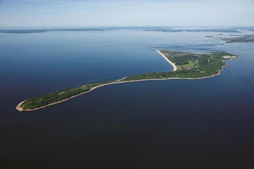 Image result for plum island