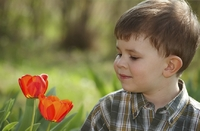 Type 1: FDA OKs Levemir for Two- to Five-Year-Olds
