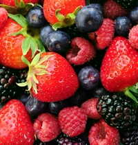 Fruits, Proteins Can Help Thwart Kidney Disease