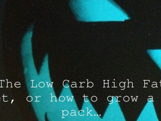 The Low Carb High Fat diet, or how to grow a six pack…