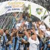 Gremistas erguem a taça e comemoram o título da Copa do Brasil. Foto: Vinicius Costa/Futura Press/Folhapress