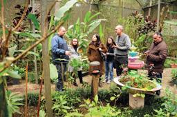 Diretora da Escola de Ecologia de São Caetano visita Borboletário Diadema