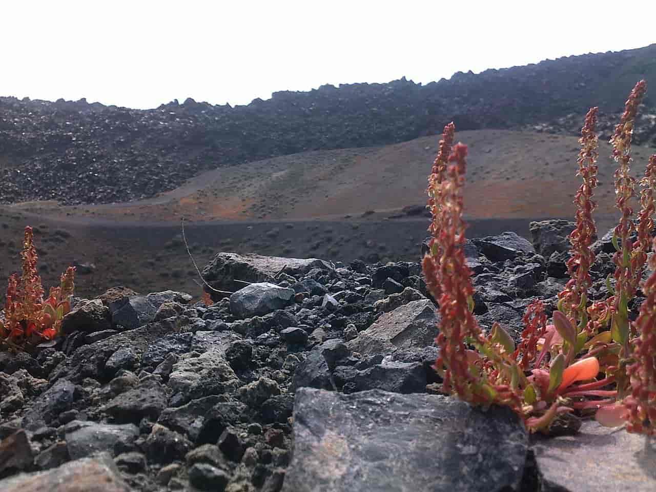 «Βράζει» το Ηφαίστειο Κολούμπο στις Κυκλάδες