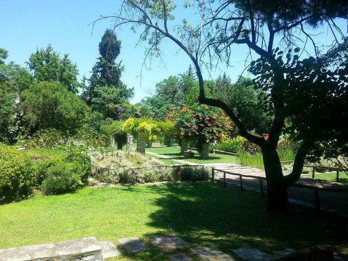 Ο μεγαλύτερος βοτανικός κήπος της ανατολικής Μεσογείου βρίσκεται στην Αθήνα. Και οι περισσότεροι δεν τον γνωρίζουν καν! - Εικόνα 12