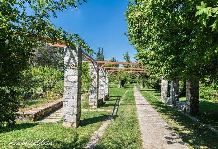 Ο μεγαλύτερος βοτανικός κήπος της ανατολικής Μεσογείου βρίσκεται στην Αθήνα. Και οι περισσότεροι δεν τον γνωρίζουν καν! - Εικόνα 13