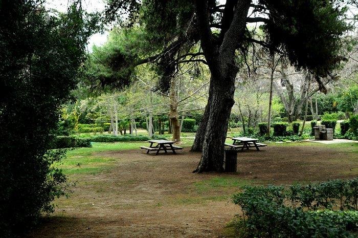 Ο μεγαλύτερος βοτανικός κήπος της ανατολικής Μεσογείου βρίσκεται στην Αθήνα. Και οι περισσότεροι δεν τον γνωρίζουν καν! - Εικόνα 16