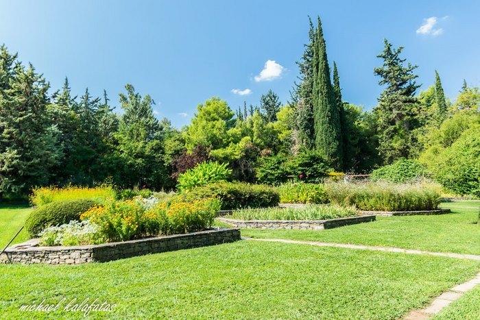 Ο μεγαλύτερος βοτανικός κήπος της ανατολικής Μεσογείου βρίσκεται στην Αθήνα. Και οι περισσότεροι δεν τον γνωρίζουν καν! - Εικόνα 18