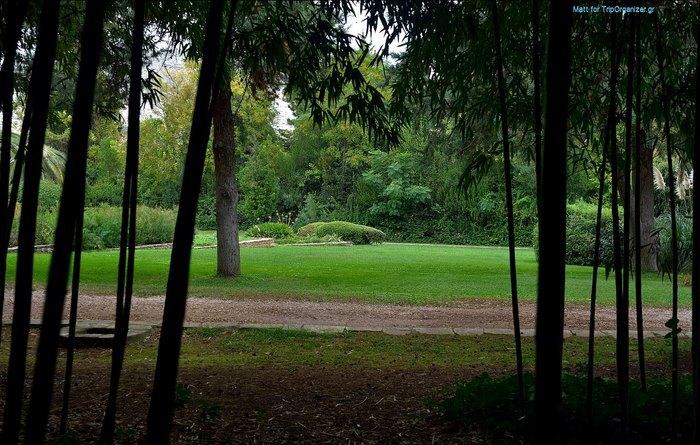 Ο μεγαλύτερος βοτανικός κήπος της ανατολικής Μεσογείου βρίσκεται στην Αθήνα. Και οι περισσότεροι δεν τον γνωρίζουν καν! - Εικόνα 20