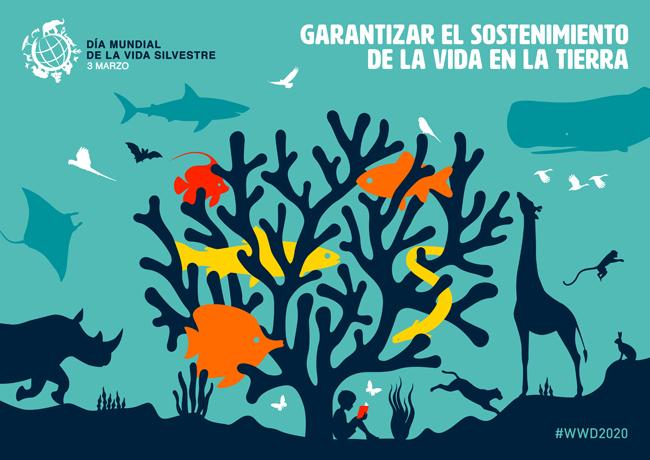 Cartel del Día Mundial de la Vida Silvestre 2020