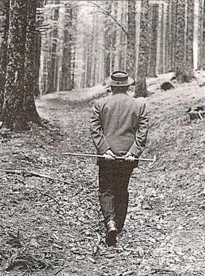 Heidegger_bosque