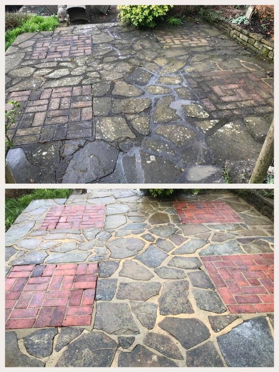 Before and After Softwashing Lichen Removal