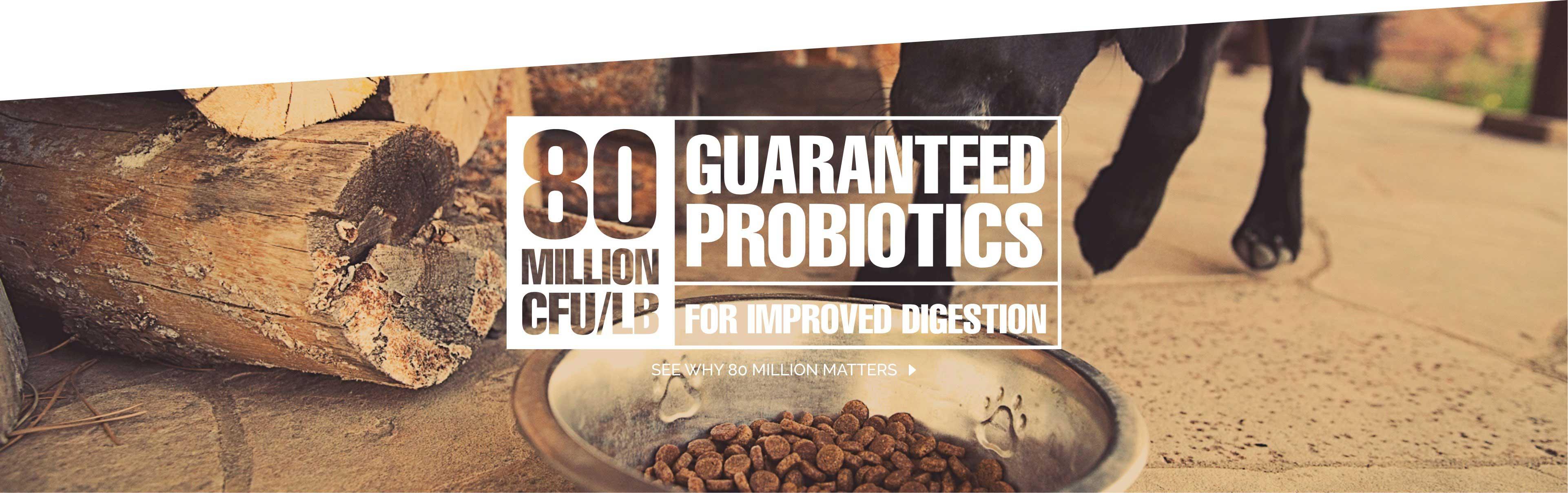 80 Guaranteed Probiotics