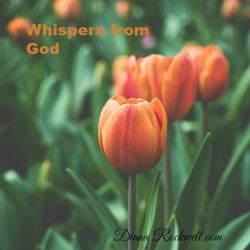 Whispers From God 11