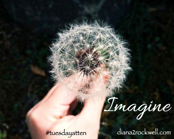 Tuesdayatten_Imagine_Diana