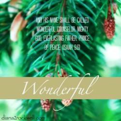Wonderful