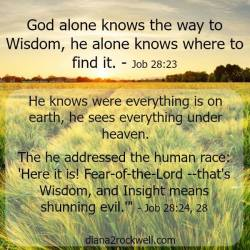 Is There A Way To Wisdom?