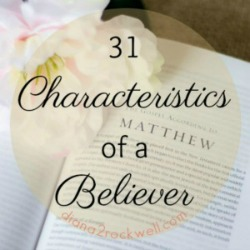 31 Characteristics of a Believer