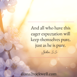 Characteristic Twenty-Two of a Believer-Pure in Heart