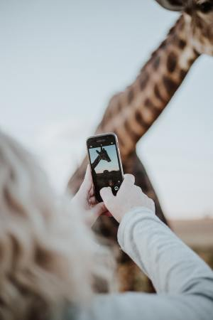 Best Apps for Creative Instagram Stories