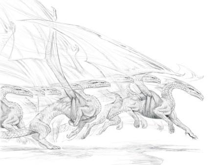 DragonNature II_sketch_008 copy