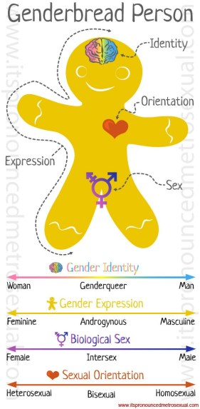 genderbread-person-gender-identity-graphic