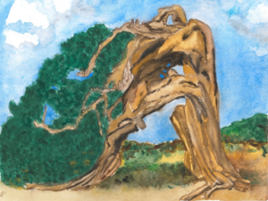 Your Inner Strength: Persistence Bent persistent tree refuses to stop growing.