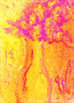 Firecracker Flowers
