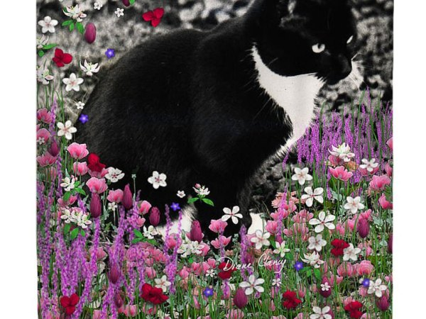 Freckles In Flowers II, Black and White Tux CatShower Curtain