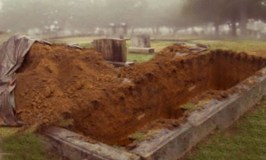 Freshly Dug Graves: image of a freshly dug grave. Photo Credit: Lauren Housman.