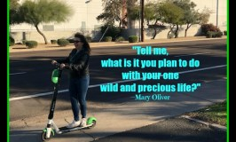 "Life Planning 101: Image of a woman riding a scooter. Headline is the Mary Oliver quote: ""Tell me what it is you plan to do with your one wild and precious life?"""